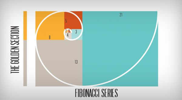 Fibonacci serires golden section Flawless Layout Logo, the Golden section proportion and the Fibonacci series formula