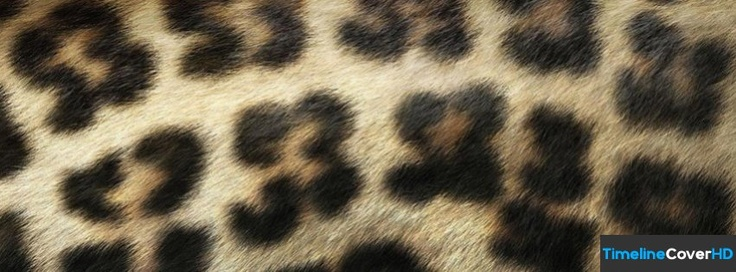 Leopard Pattern Facebook Cover Timeline Banner For Fb71 Facebook Cover