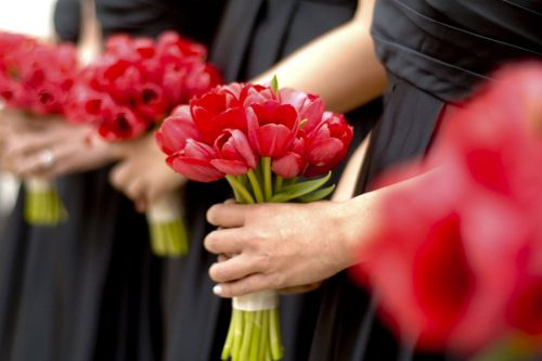 I don't like the red, but I like the tulips.    red tulip bridesmaids bouquets by Floral Verde LLC, photo by Mattson Pictures