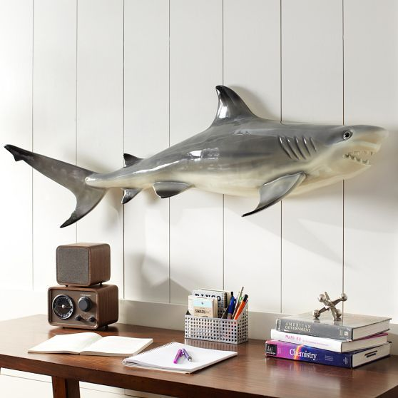 Find this Pin and more on shark bedroom. The 16 best images about shark bedroom on Pinterest   Urban