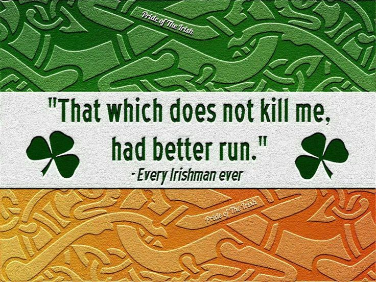 That which does not kill me better run. Great Irish quotes go great with great Irish jewelry: http://www.handcraftedcollectibles.com/irish_jewelry.htm