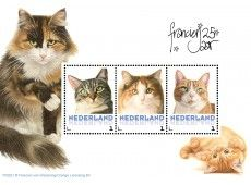 Nu te bestellen bij PostNL, een leuke Franciens Katten Postzegelset! Mooie postzegels en kaarten in 5 verschillende varianten!