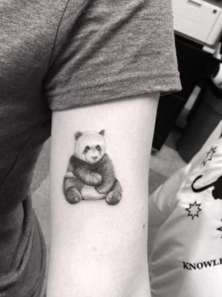 141 best images about tattoos on pinterest lion tattoo for Dr woo tattoo price