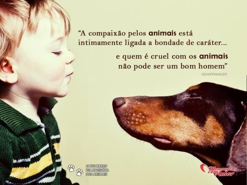 """""""A compaixão pelos animais está  intimamente ligada a bondade de caráter... e quem é cruel com os animais não pode ser um bom homem."""" #DiaDosAnimais"""