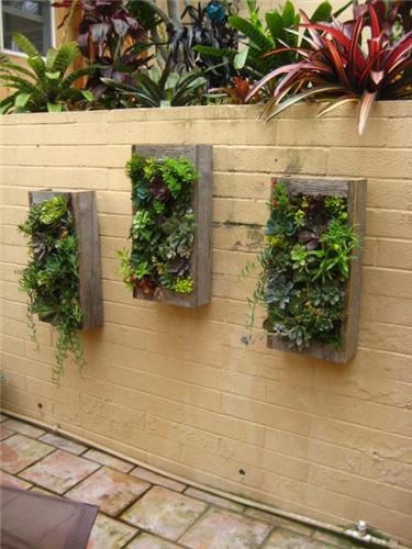 1000 images about landscaping on pinterest wall mounted planters garden edging and landscape - Wall mounted planters outdoor ...