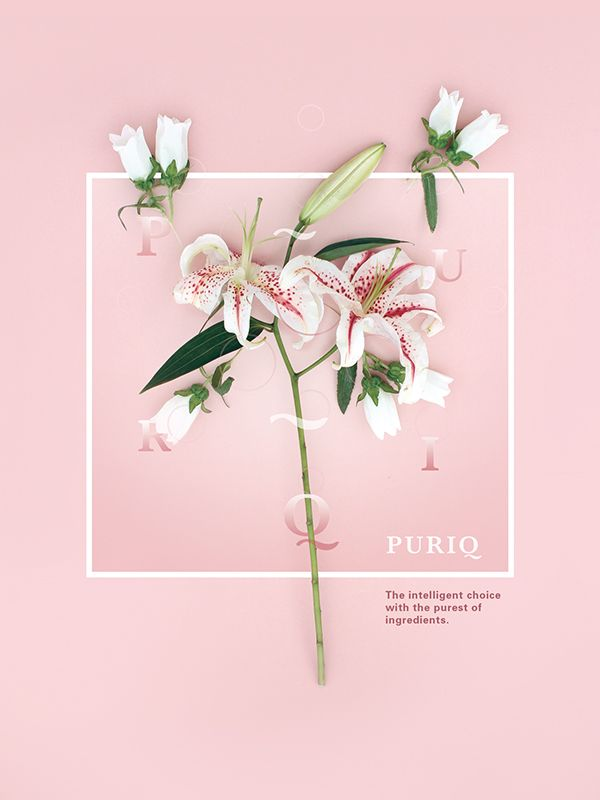 Puriq on Branding Served