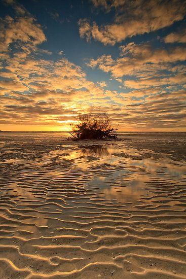 ~~Sand Puzzles by tinnieopener ~ early morning, Tatlows Beach, Stanley, Tasmania, Australia~~