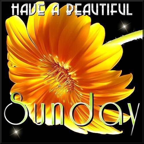 Have a Beautiful Sunday weekend sunday sunday quotes happy sunday sunday blessings sunday greetings sunday poems sunday prayers sunday wishes for friends and family animated sunday