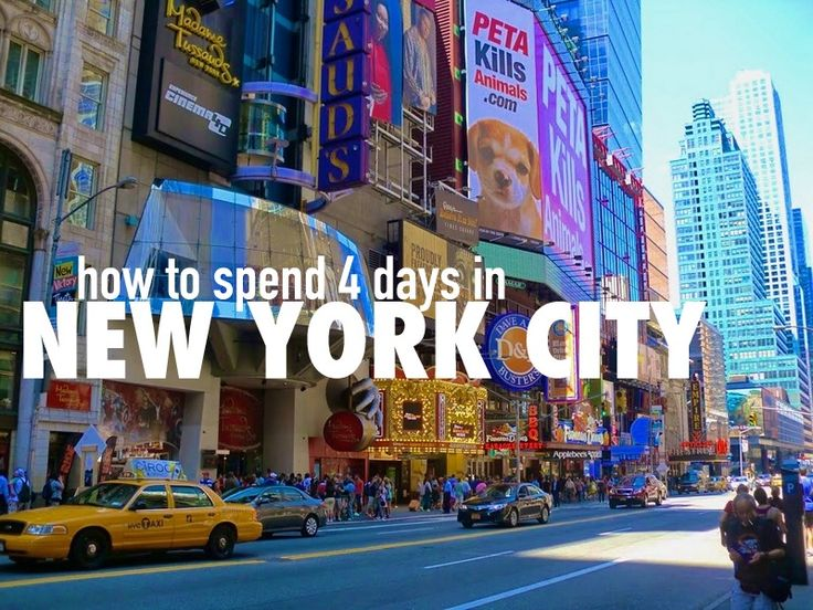 how to spend a day in new york