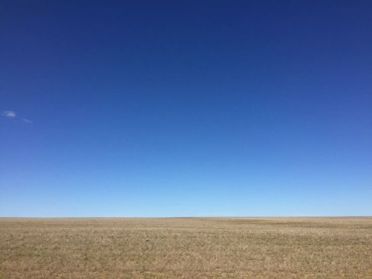Silence of the Wheatbelt