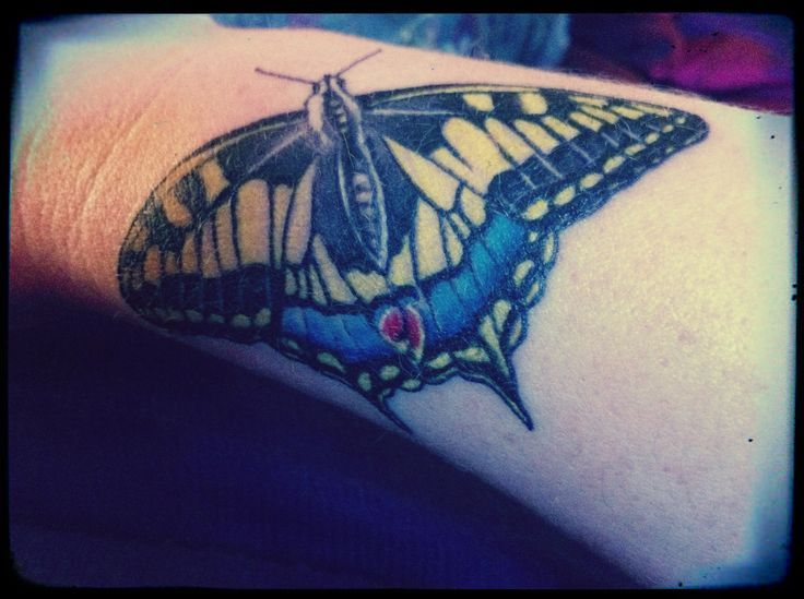29 best Swallowtail Butterfly Tattoo images on Pinterest ...