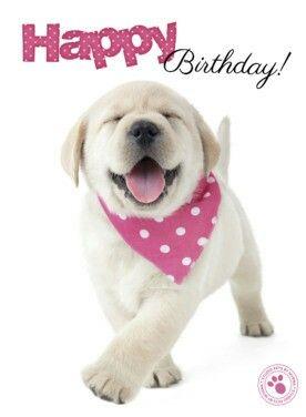 Happy Birthday! #puppy