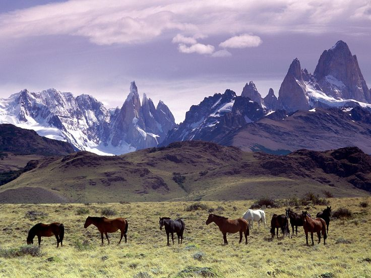 The Andes --- Patagonia, Argentina