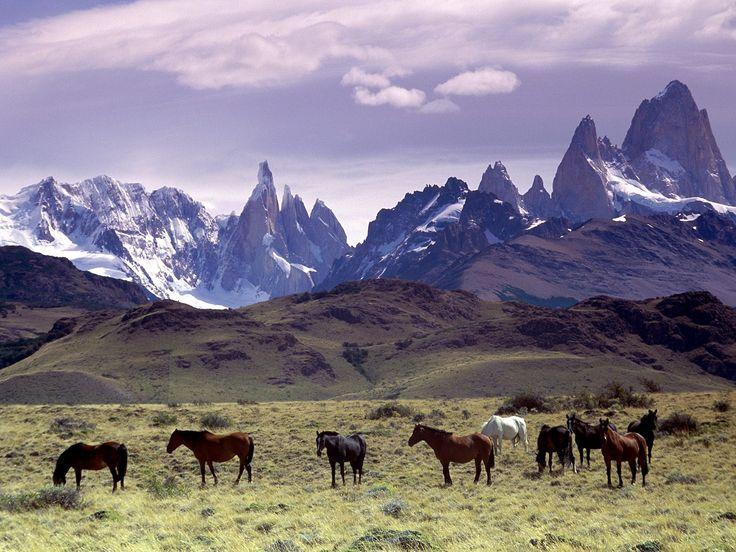 La Patagonie : une destination du bout du monde