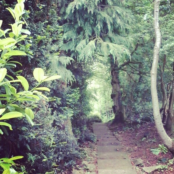 A secret path in the Cotswolds/UK