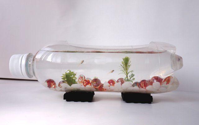 ペットボトルの水槽作り方 メダカ稚魚飼育におしゃれなボトルアクアリム まるまる録 水槽 メダカ メダカ 水草