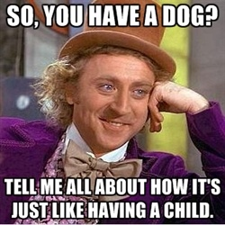 Willy Wonka meme. Crossfit. Humor.
