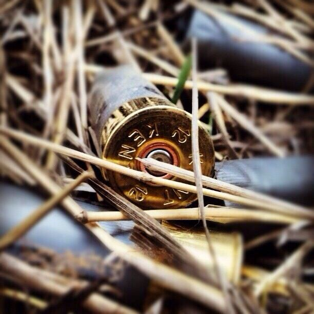 12 gauge shotgun shell | Country | Pinterest | Shotgun ...