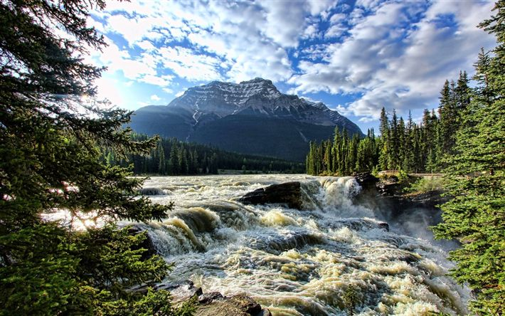 Download wallpapers Canada, waterfalls, Bow River, forest, mountains, Alberta, North America