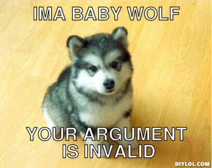 argument is invalid meme - Google Search