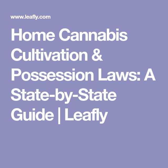 Home Cannabis Cultivation & Possession Laws: A State-by-State Guide   Leafly