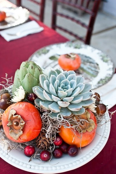 succulent, persimmons, artichoke and cranberries with spanish moss
