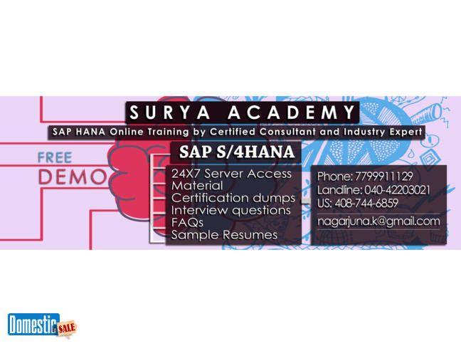 SAP S 4 HANA Online Training Classes We are dealing with multiple - sap bw sample resume