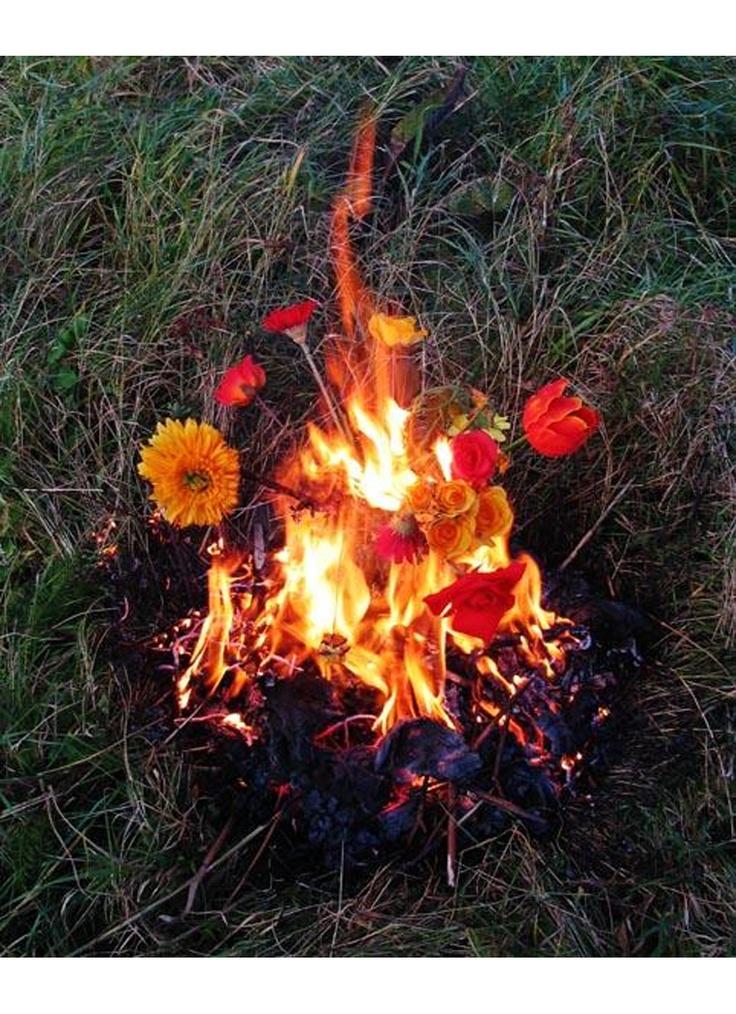 We Like Art Elspeth Diederix, Fire Still Life, 2004