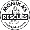 Monika's Doggie Rescue. They are a private registered charity that save and re-home as many dogs as they can from council pounds. Based in Ingleside, Sydney, New South Wales.