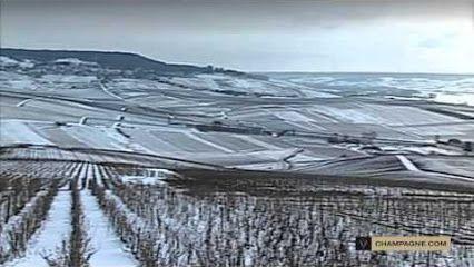 Klima der Champagne  Mit der Lage zwischen dem 48° und 49,5° nördlicher Breite liegt die Champagne an der Nordgrenze des Weinbaus. Das Klima ist semi-kontinental mit ozeanischen Einflüssen. Die jährliche Niederschlagsmenge ist mit 650 bis 700 mm recht moderat. Die Sonnenscheindauer beträgt durchschnittlich 1.650 Stunden, wovon ein Viertel auf Juli und August entfällt.  www.ice-imperial.de  © Text: www.wikipedia.org © Video: CIVC