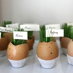 Grow little grass eggs just in time for Easter, to use as a place setting or a centerpiece