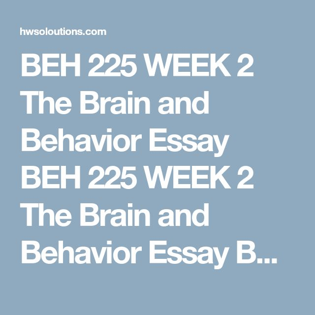 brain and behavior essay Teen brain functions and behavior - teen brain functions aren't like those of  adults why do teens engage in risk-taking behaviors because the teen brain.