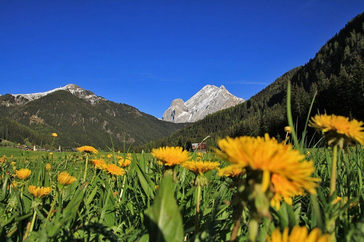 Val di Fassa - Canazei in this spring days - www.dolomitigallery.com