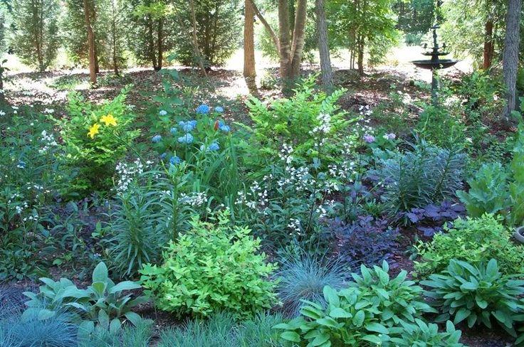 Woodland garden yards pinterest for Woodland shade garden designs