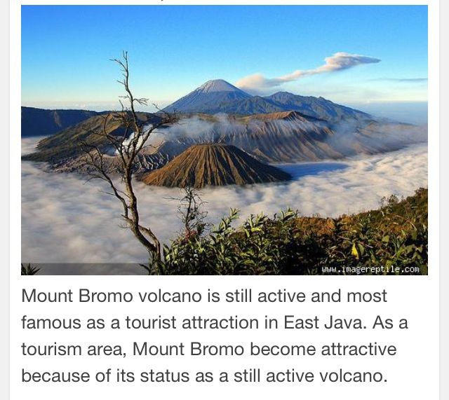 Mount Bromo-East Java Indonesia.