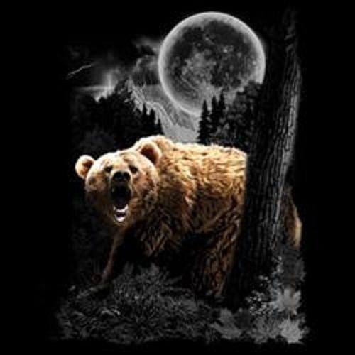 Wild Bear HEAT PRESS TRANSFER PRINT for T Shirt Sweatshirt Fabric Tote Bag 227a
