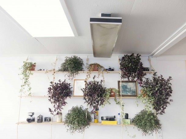 Studio of artist Jon Thom and housing his other 3 businesses //  Dunedin, New Zealand // Photography by Julia Atkinson for Studio Home