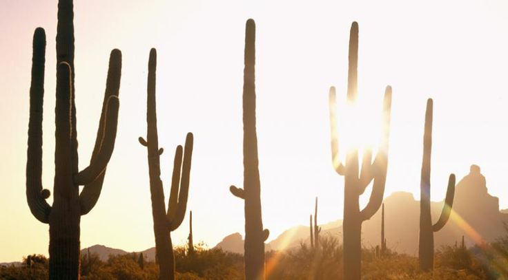 How to stop prickly heat and heat rash from ruining your summer