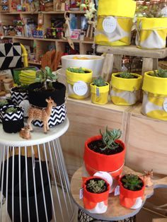 fabric bucket plants - Szukaj w Google