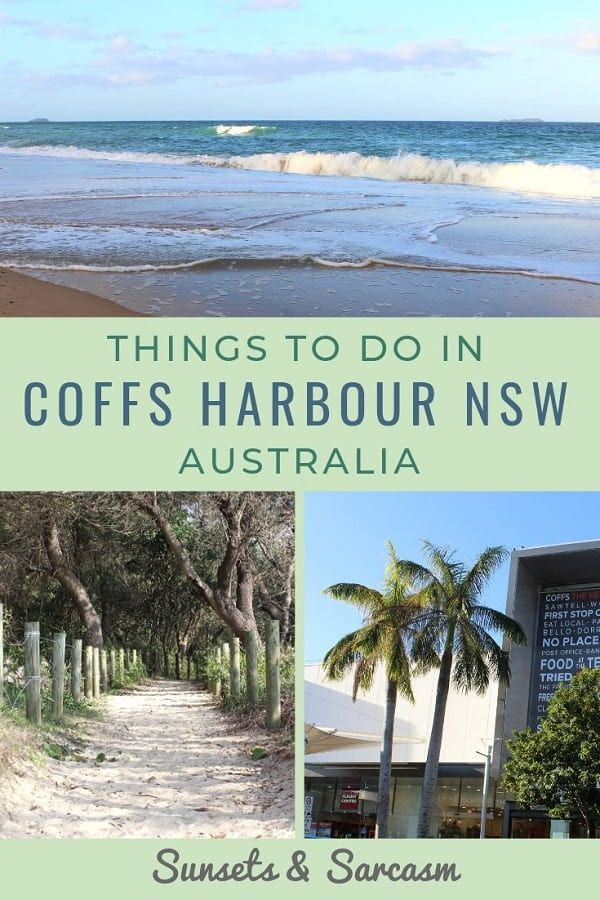 Things To Do In Coffs Harbour Nsw Coffs Harbour Australia Travel Whale Watching Trip