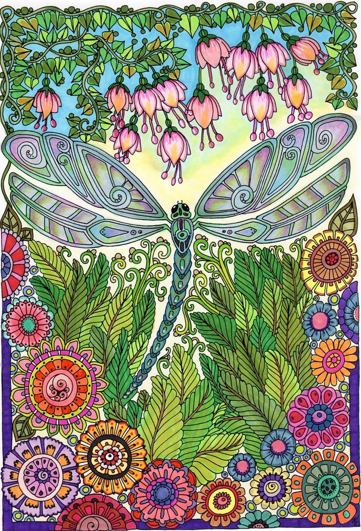 10 best dragonflies entangled images on Pinterest Adult coloring
