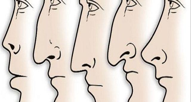 Πολλοί ειδικοί πιστεύουν ότι η μύτη σας αποκαλύπτει πράγματα για την προσωπικότητά σας όταν μπορε...