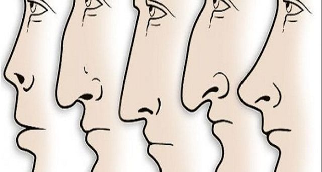 Πολλοί ειδικοί πιστεύουν ότι η μύτη σας αποκαλύπτει πράγματα για την…
