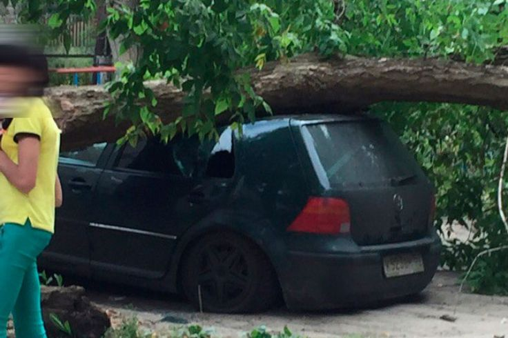 В одном из дворов Арзамаса дерево упало на машину. >>> В одном из дворов по улице Калинина на припаркованную машину Wolksvagen Golf  упало дерево. #83147ru #Арзамас #дерево #машина #ветер Подробнее: http://www.83147.ru/news/3304