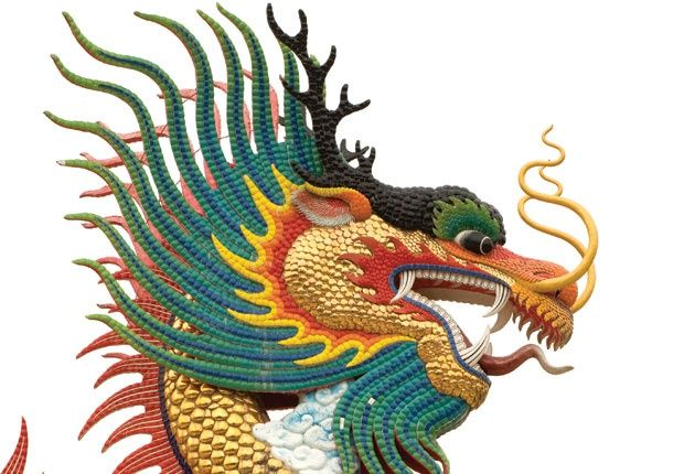 Pics for dragon side face for Chinese dragon face template