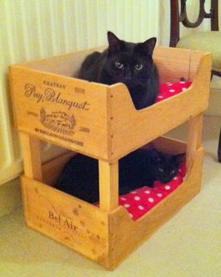 OMG. Cat bunk beds made of wooden wine boxes