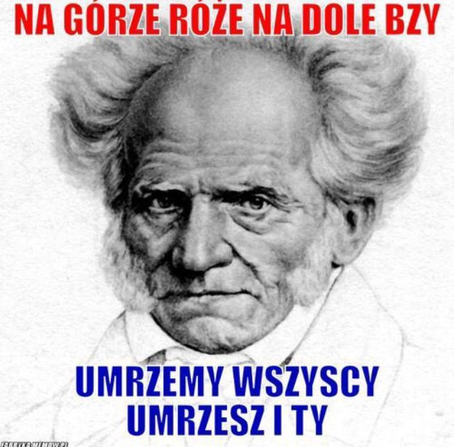 Memy z głębi internetu. druga część! #8 w losowo ~24.06.2017 #3 w l… #losowo # Losowo # amreading # books # wattpad