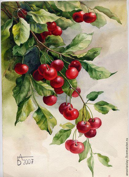 Ветка вишни - ярко-красный,вишня,лето,акварель,акварельная картина,акварельная живопись