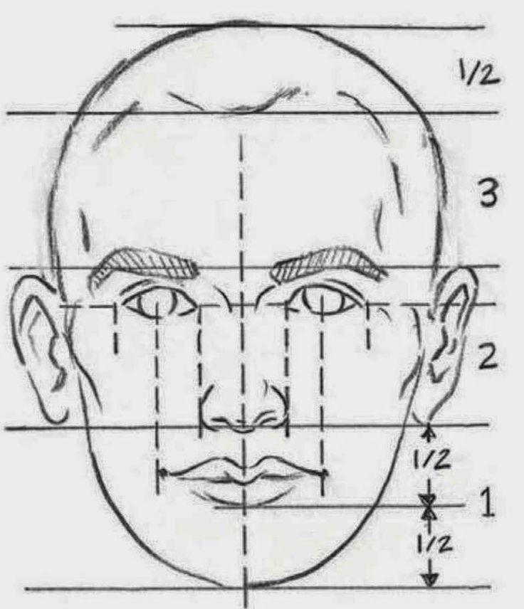 Resultado de imagen para como medir las proporciones para dibujar un rostro de perfil