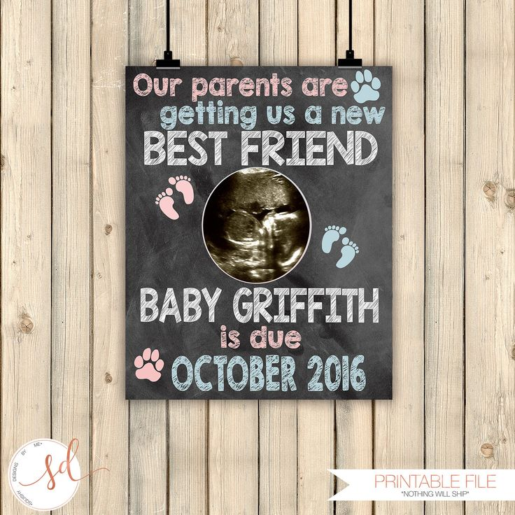 New Best Friend Pregnancy Announcement Sign, Dog New Best Friend Reveal, Cat, Ultrasound Pets Pregnancy Announcement, Baby BFF, DIGITAL by SquishyDesignsbyMe on Etsy